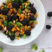 Grov salat med rosenkål og brombær
